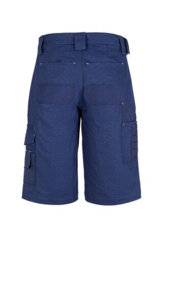 ZW013 Blue B