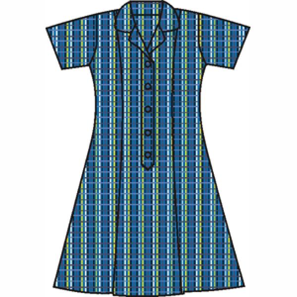 Brompton PS Custom school dress