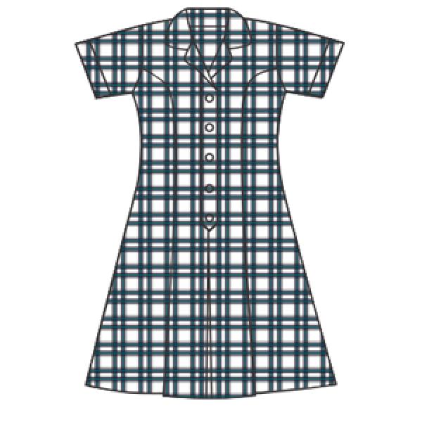 WGS Summer Dress
